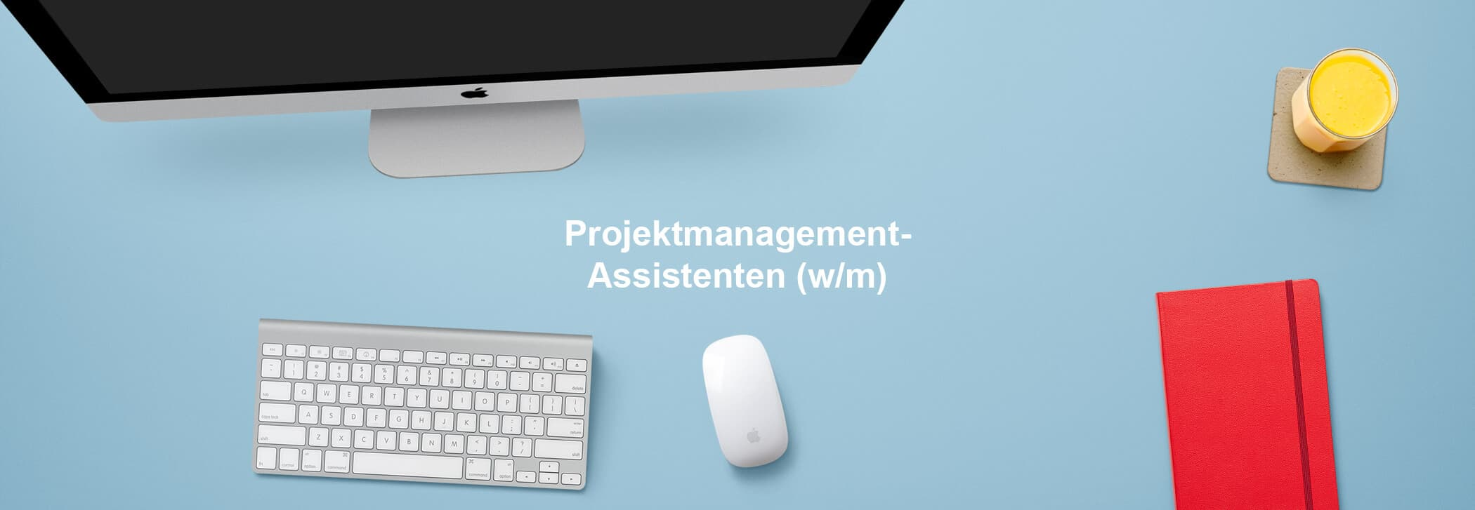 Projektmanagement-Assistent